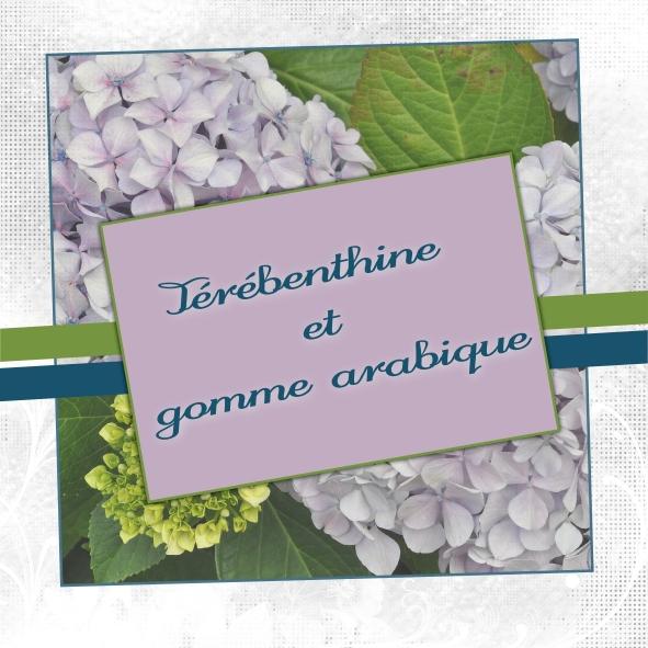 logo terebentine et gomme arabique